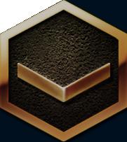 icon-rank-bronze.png